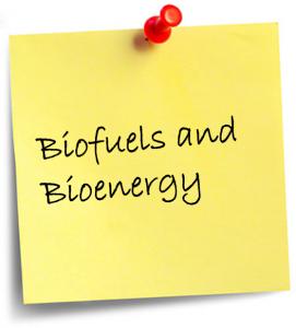 Biofuels and Bioenergy